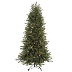 Vickerman 19329 – 7′ x 50″ Blue Spruce 500 Clear Lights Christmas Tree (C103571)  http://www.fivedollarmarket.com/vickerman-19329-7-x-50-blue-spruce-500-clear-lights-christmas-tree-c103571/