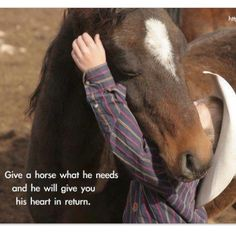 """Give a horse what he needs and he will give you his heart in return."""