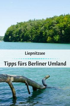 Liepnitzsee: Einer der schönster Seen im Berliner Umland. #Brandenburg #Liepnitzsee #BerlinTipps Travel Around The World, Around The Worlds, Berlin City, Berlin Berlin, Jolly Holiday, Weekend Projects, Germany Travel, Far Away, Animal Crossing