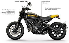 The SCRAMBLER DUCATI is Full Throttle ahead! Reserve your Scrambler today!