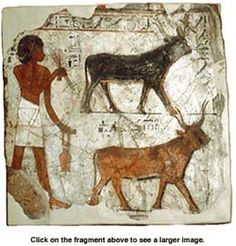 14 best farming sites images on pinterest agriculture ancient ancient egypt farming fandeluxe Images
