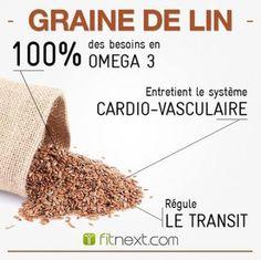 Les bienfaits des GRAINES DE LIN | Bienfaits des graines