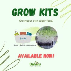 Grow Kit, Go Ahead, Grow Your Own, Superfoods, Seeds, Messages, Instagram, Super Foods