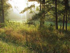 Northeast Texas sunrise, near Red River