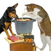 PAGÁČE - len tak k vínečku (fotorecept) - recept Naan Flatbread, Flan, Dog Food Recipes, Pudding, Creme Brulee, Dog Recipes