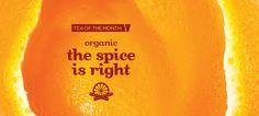 the spice is right (organic) - a sweet and spicy blend of green tea, cinnamon and orange peel. Davids Tea, Buy Tea, Cute Cups, Biologique, Orange Peel, Sweet And Spicy, Tea Time, Tea Party, Cinnamon