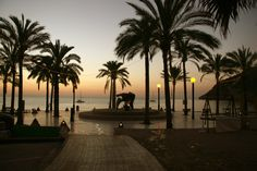 Beauty of our area: La plaza El Albir