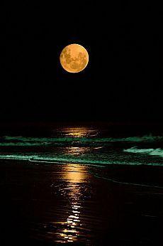moon night beauty by furkl.com - Pixdaus | Moon