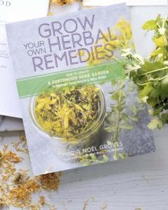 herbal academy Grow Your Own Herbal Remedies Natural Headache Remedies, Cold Remedies, Natural Health Remedies, Herbal Remedies, Tummy Tea, Cleaning Recipes, Medicinal Herbs, Grow Your Own, Health And Beauty