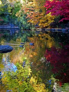 ✯ Lithia Park - Ashland Oregon