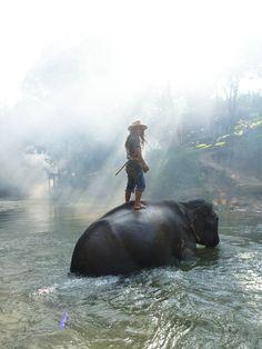 Comme chaque année, National Geographic organise leTraveler Photo Contest, un concours photo réunissant des photographes du monde entier et des centaines de