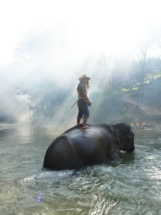 National+Geographic+Photo+Contest+2013 | 60 superbes images du Traveler Photo Contest 2013 | Ufunk.net