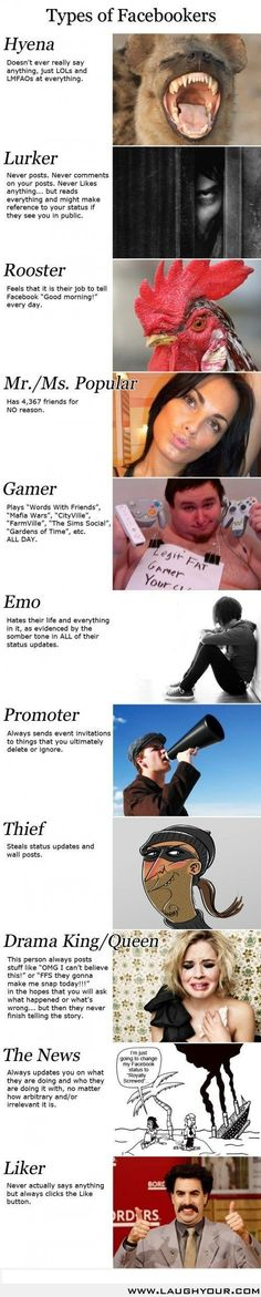 Types Of Facebookers!