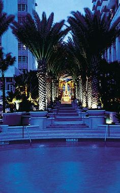 Loews Miami Beach Hotel in Miami Beach Beautiful place for a honeymoon.  Funcruisin.com can plan the honeymoon of your dreams!