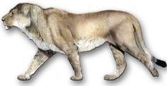 LOS 10 ANIMALES EXTINTOS MÁS SORPRENDENTES DE LA HISTORIA