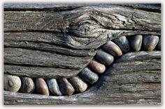 Steine im Holz....