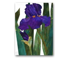 Purple IRIS FLOWER  Spring Floral Card  Design by by tornpaperco