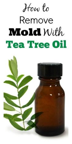 How To Naturally Remove Mold ~~ With Tea Tree Oil.. {Tested & Proven}