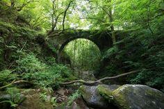 Fragas do Eume (Galicia)  - Bosques encantados en España: territorios de mitos y leyendas