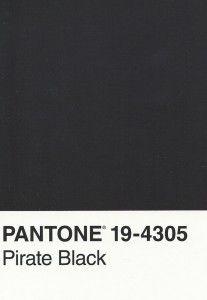 Pantone Color Card in Pirate Black