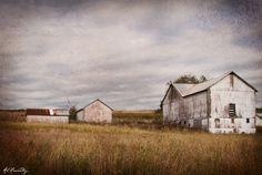 Amish Barns near Greenville, PA