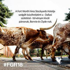 #Bonnie&Clyde #StockyardsHotel #FortWorth #FGR18