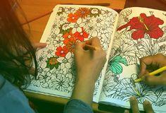 Tudo Que Você Precisa Saber Sobre Livros de Colorir Para Adultos