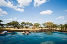 Sanctuary Swala Camp Tanzania