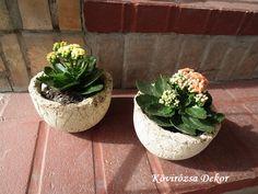 Kalanchoe blossfeldiana in hypertufa pot, Korallvirág Könnyűbeton Virágtartóban Succulents, Planter Pots, Decor, Decoration, Succulent Plants, Decorating, Deco