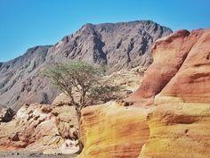 Colorful #Sinai desert