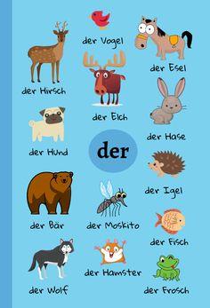 Study German, German English, Learn German, Dutch Language, German Language Learning, Foreign Language, German Grammar, German Words, Germany Language