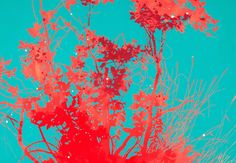 Henrik Simonsen/Scarlet, 2014, Edition of 60, 7 colour screenprint on Somerset 410gsm paper, paper size 108 x 88 cm