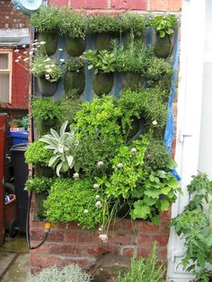 Wicked 40 Extraordinary Vertical Garden for Green and Cool House https://decoor.net/40-extraordinary-vertical-garden-for-green-and-cool-house-577/
