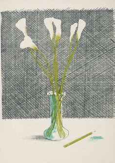 David Hockney, 'Lillies' 1970-1