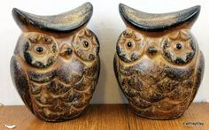 These are the exact owl salt and pepper shakers shakers I have in my kitchen!!