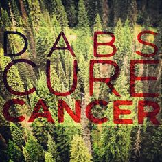 DABS CURE CANCER