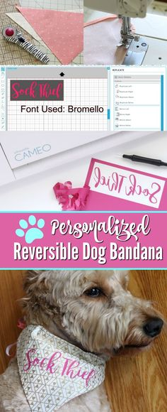 How to Make a Reversible, Personalized Dog Bandana | Use basic sewing skills, your Silhouette and HTV to create a unique pet accessory. |sponsored| pitterandglink.com