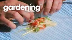 How to wrap rice paper rolls + cooking video - Vegetarian rice paper rolls recipe GardenChef