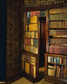 hidden door in library bookcase leads to a secret passage Secret Door Bookshelf, Bookcase Door, Hidden Spaces, Hidden Rooms, Library Room, Dream Library, Bookshelves With Tv, Book Shelves, Storage Shelves