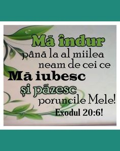 God Loves Me, Green Beans, Spirituality, Herbs, My Love, My Boo, Spiritual, Herb, Spice