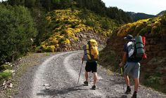 Read our guide to the top ten walking and hiking routes in Spain, from the celebrated Camino de Santiago, to the Picos de Europa National Park.
