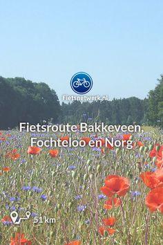 Maps, Cycling, Biking, Blue Prints, Bicycling, Map, Cards, Ride A Bike