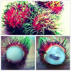 rambutan. My sister in law introduced me to this fruit in the streets of Chinatown .. Wow was a very pleasant surprise! Yummo