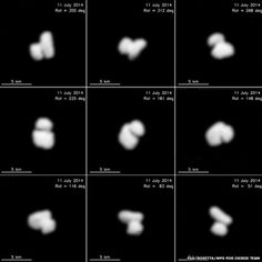 The Rosetta probe has acquired sensational new images of Comet 67P/Churyumov-Gerasimenko, which it is now chasing through space, destined for an historic touchdown on the comet on November 11, 2014. The pictures show that the comet appears have a double nucleus or core. It is what scientists call a