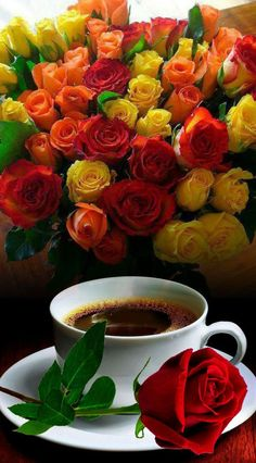 Check out photo effects collection by Tudora Stemate on Photo Lab Good Morning Gift, Good Morning Coffee, Coffee Break, Good Morning Flowers Gif, Breakfast Pictures, Rose Flower Wallpaper, Beautiful Rose Flowers, Coffee Photography, Tea Art