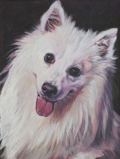 American Eskimo Dog portrait CANVAS art print of LA by TheDogLover