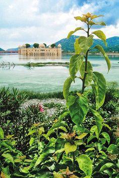 Jal Mahal, Lake Palace Hotel, Man Sagar Lake, Jaipur City, India
