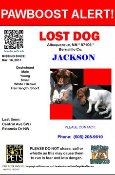 Please spread the word! Jackson was last seen in Albuquerque, NM 87105.    Nearest Address: Near Central Ave & 59th St SW
