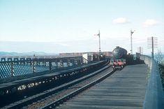 Dundee, Dandruff, Diesel, 1960s, Scotland, Memories, Green, Diesel Fuel, Memoirs