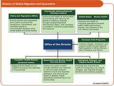 CdphS Organizational Chart  Public Health    Public